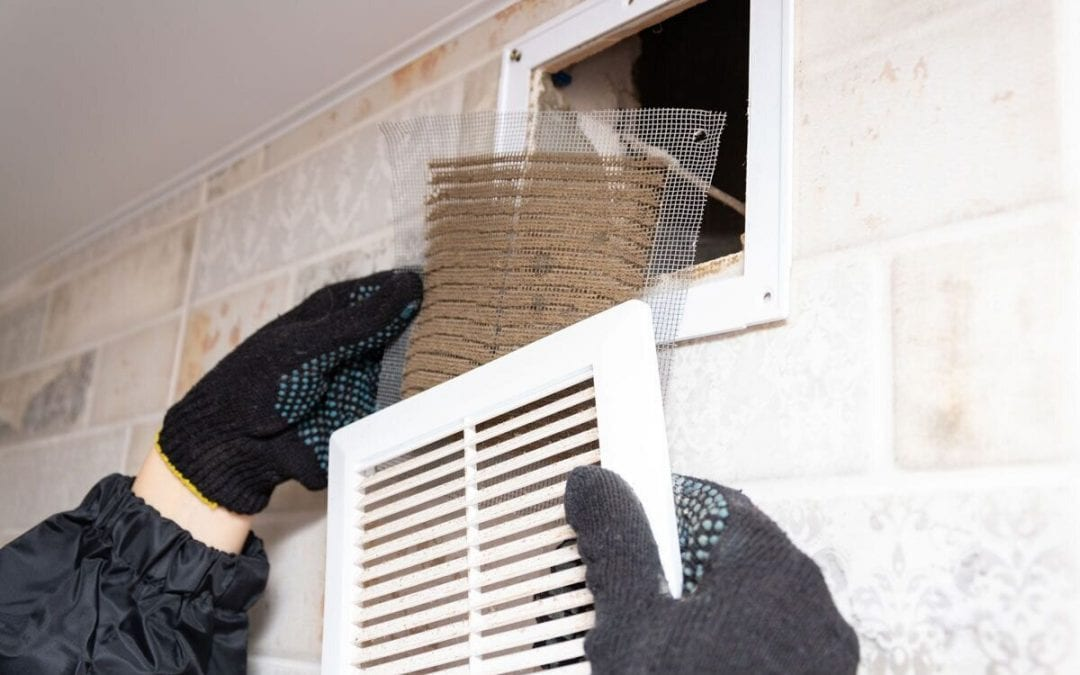 The Ultimate Guide to Duct Cleaning Services